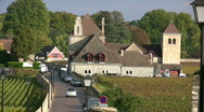 Stock Video Footage of vineyard - cote d ore - france