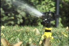 Lawn Sprinkler Stock Footage