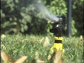 Stock Video Footage of Lawn Sprinkler