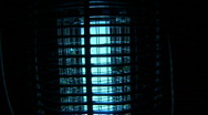 Stock Video Footage of Bug Zapper 7