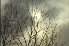 Snow with Sun Through Clowds 1 Stock Footage