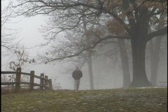 Walk in the Fog Stock Footage