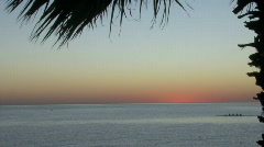 Sunrise in mexico with canoe palm tree Sea of Cortez Stock Footage