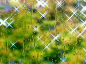 Shining drops on the window  PAL & HD Available Stock Footage