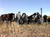 Civil war horse cannon Stock Footage