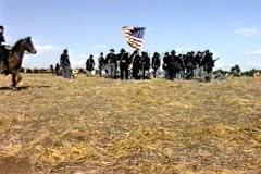 Civil war brigade horse Stock Footage