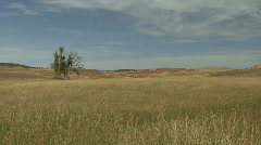 P00054 Prairie Scene in the Fall Stock Footage