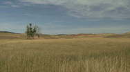 Stock Video Footage of P00054 Prairie Scene in the Fall