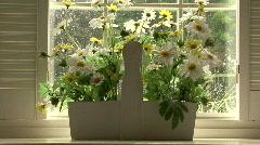 Basket Of Flowers Stock Footage