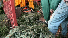 cutting the Christmas tree limbs - stock footage