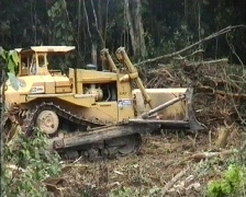 Clearing rainforest for an oil well Stock Footage