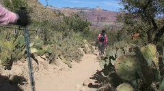 Group of Female Hikers on Trail at the Grand Canyon Stock Footage