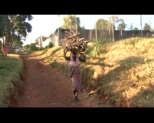 KENYA WOMAN CARRIES FIREWOOD - stock footage