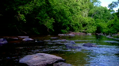 Zoom out of Lush Flowing River Stock Footage