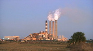 Power Plant and Palmetto Stock Footage