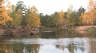 Autumn pond Stock Footage