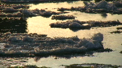 Ice drift in a river at sunset 10  Stock Footage