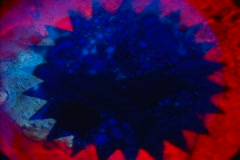 Jagged-Red-Blue-Swirl Stock Footage