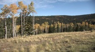 Stock Video Footage of Rockie Mountain Fall Zoom In