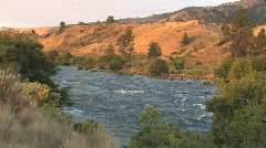Desert River at Sunrise Stock Footage