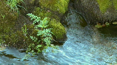 Small Waterfall pure fresh water Stock Footage