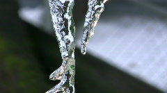 Sunlit Icicle Drips Stock Footage