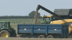 New Holland combine harvester empties wheat into trailer. - stock footage