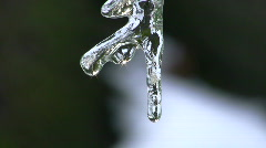 Icicle close up with drips Stock Footage