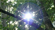 Stock Video Footage of natural shining sun