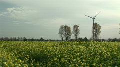 HD1080i Yellow oilseed rape field. Alternative energy Stock Footage