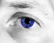 Blue Eye (PAL) Stock Footage