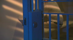 Stock Video Footage of Jail Door2