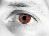 Red Eye (PAL) Stock Footage