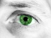Green Eye (PAL) Stock Footage