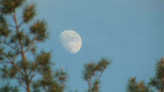 Late evening moon Stock Footage