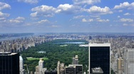 Stock Video Footage of Clean HD NYC Central Park with puffy clouds