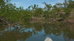 Everglade from Canoe 03 - stock footage