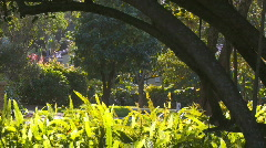 Tropical patio Stock Footage
