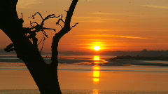 Sunset over a river estuary HD - stock footage