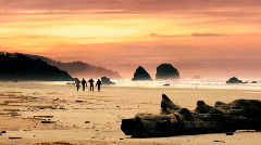 Cannon beach Stock Footage