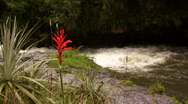 Andean river Stock Footage