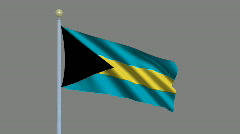 Flag of Bahamas Stock Footage