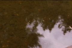 Water bridge - stock footage