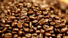 Examining coffee beans Stock Footage