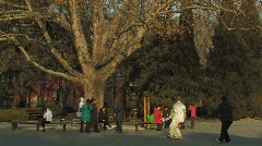 Tai Chi practiced inside Ritan Park in Beijing, China Stock Footage
