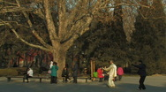 Stock Video Footage of Tai Chi practiced inside Ritan Park in Beijing, China