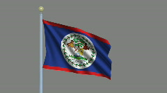 Flag of Belize Stock Footage