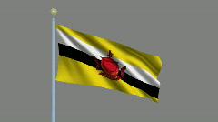 Flag of Brunei Stock Footage
