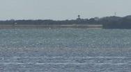 Wild Dolphins Near Island 01 Stock Footage