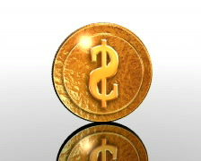 Revolved coin, PAL Stock Footage